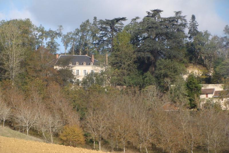 Venta de prestigio  casa Pont du casse 798000€ - Fotografía 7