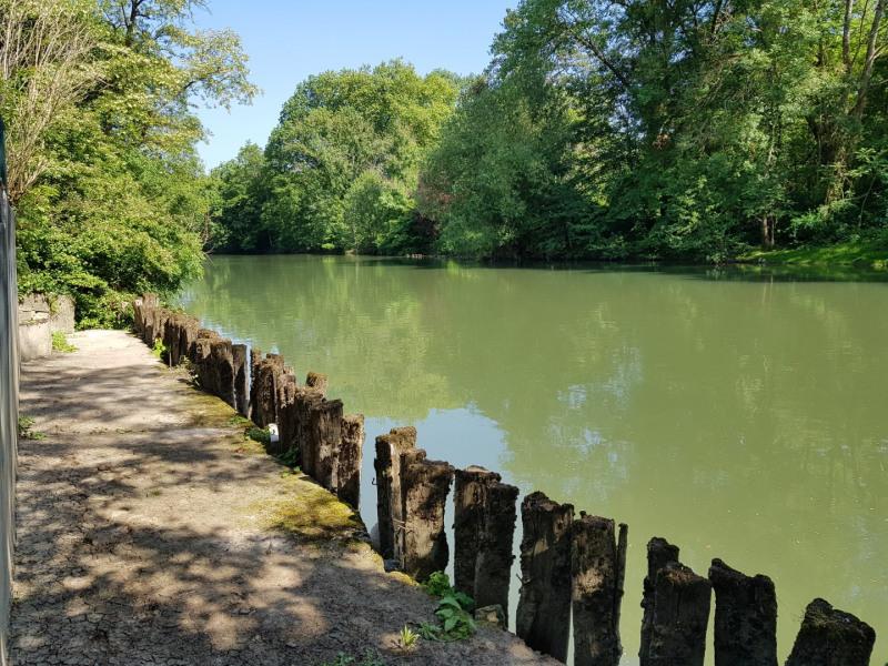 Sale house / villa Montigny-sur-loing 262500€ - Picture 12