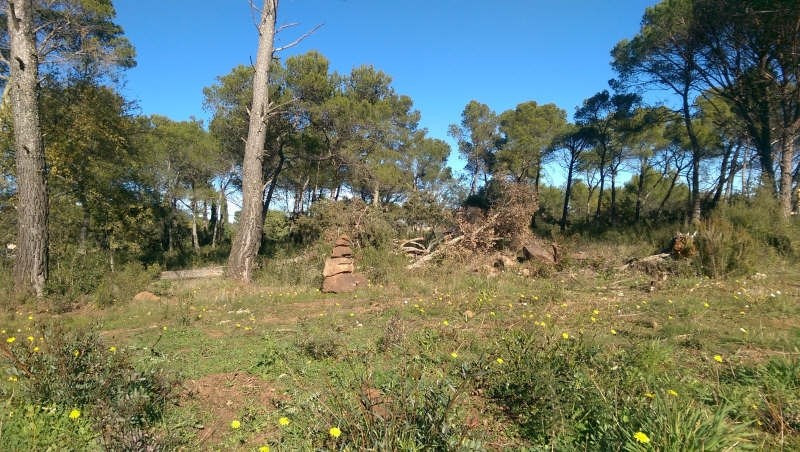 Vente terrain Le cannet des maures 169 000€ - Photo 2