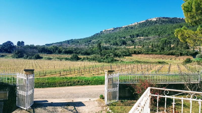 Vente maison / villa Orsan 255000€ - Photo 1