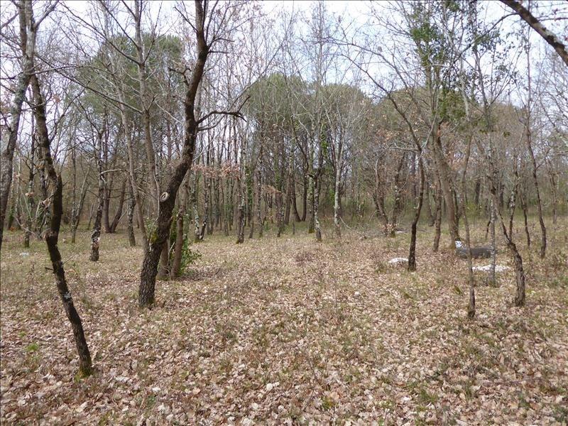Vente terrain Montauban-est 71000€ - Photo 2