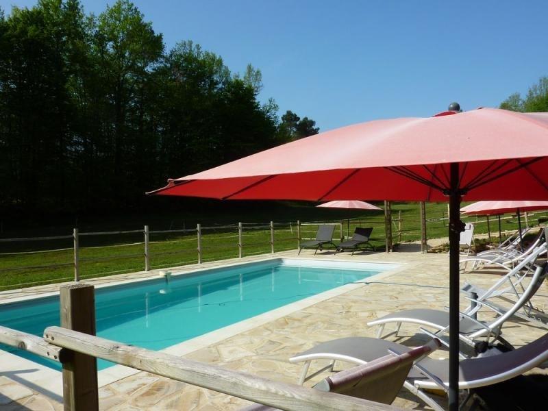 Deluxe sale house / villa Castels 588000€ - Picture 3