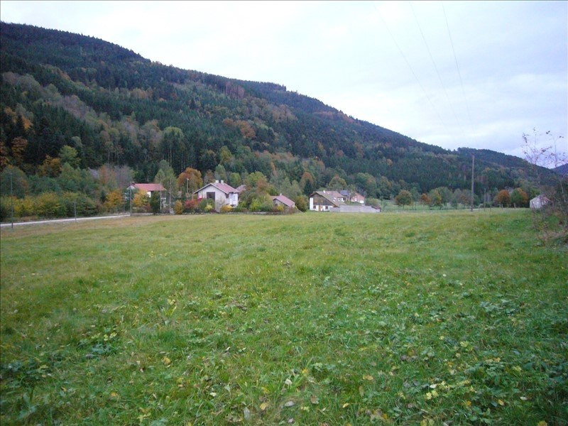 Vente terrain Ban-sur-meurthe-clefcy 38600€ - Photo 3