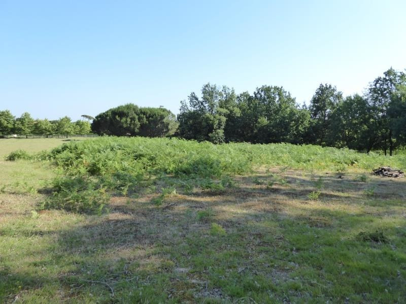 Vente terrain Montauban 159 000€ - Photo 1