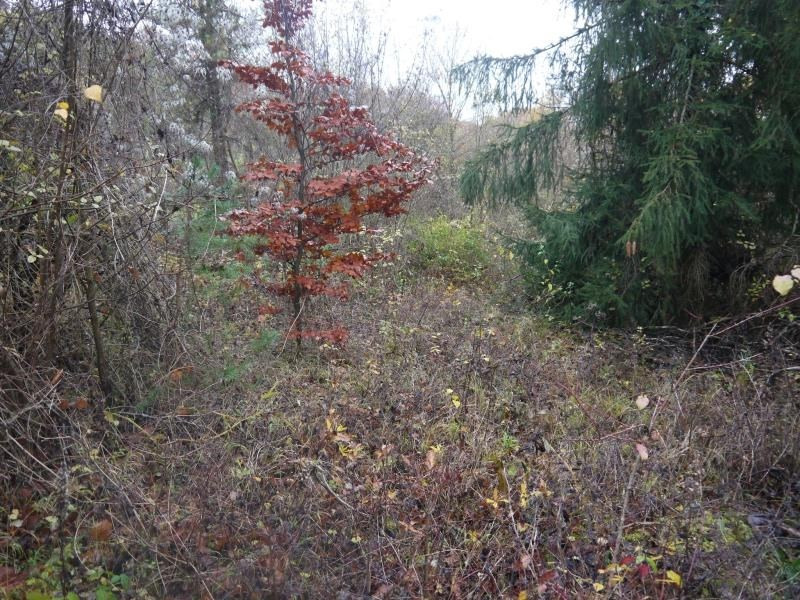 Revenda terreno Perdreauville 27500€ - Fotografia 2
