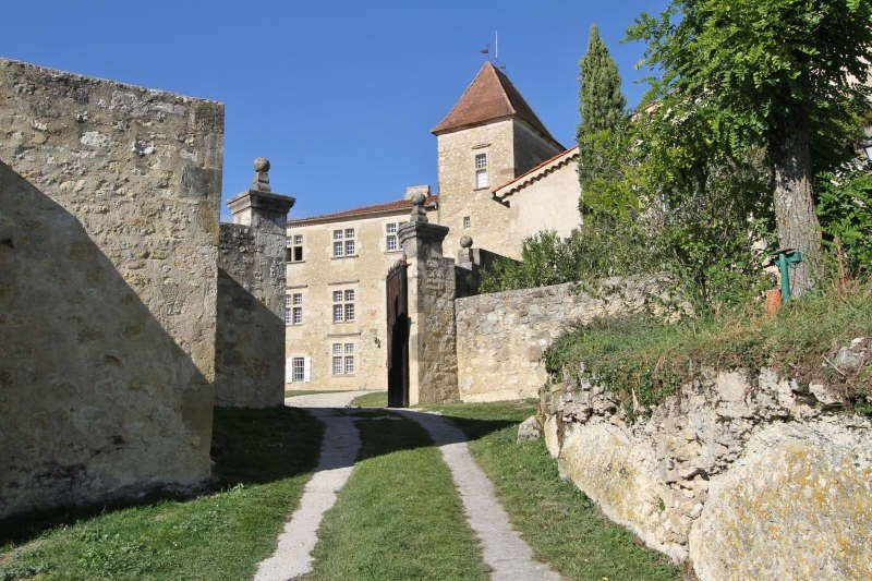Deluxe sale chateau Vic fezensac 1 200 000€ - Picture 2