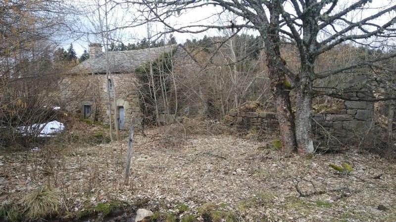 Vente maison / villa Devesset 61800€ - Photo 2