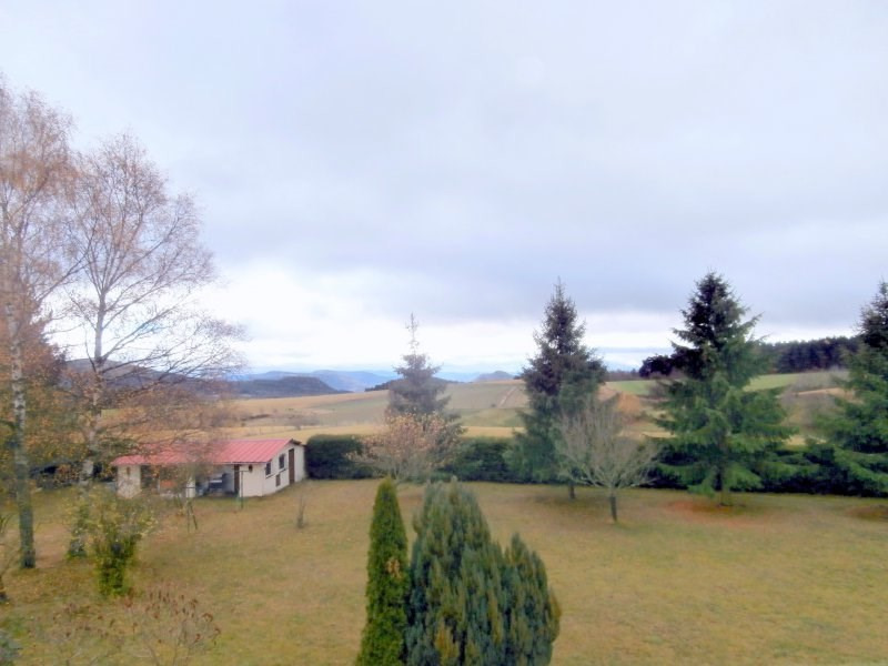 Vente maison / villa Roche en regnier 107000€ - Photo 8