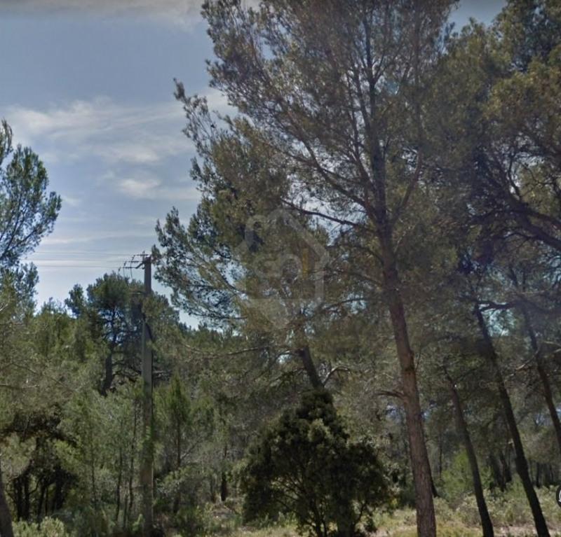 Vente terrain Le castellet 210000€ - Photo 1