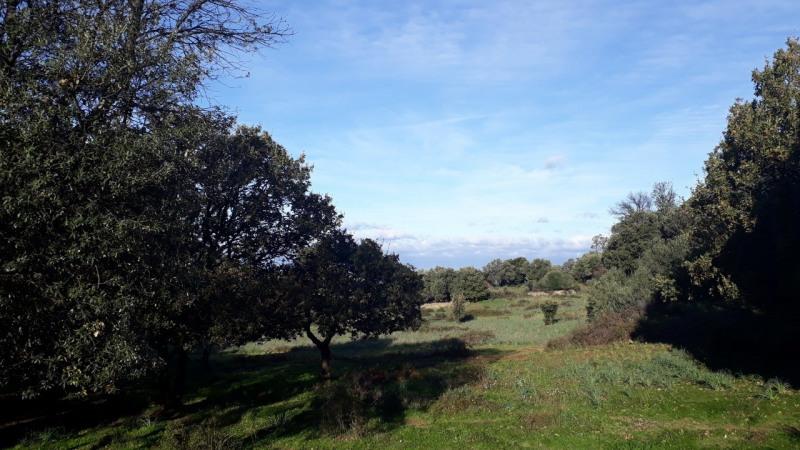 Vente terrain Calenzana 173250€ - Photo 2