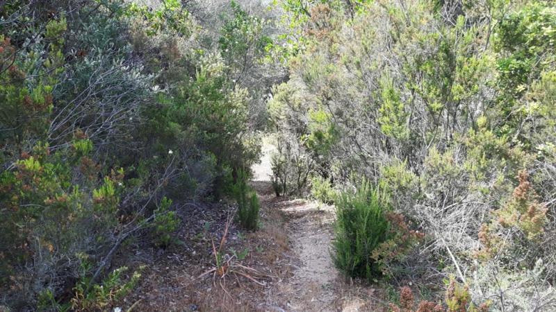 Vente terrain Bastelicaccia 508560€ - Photo 3