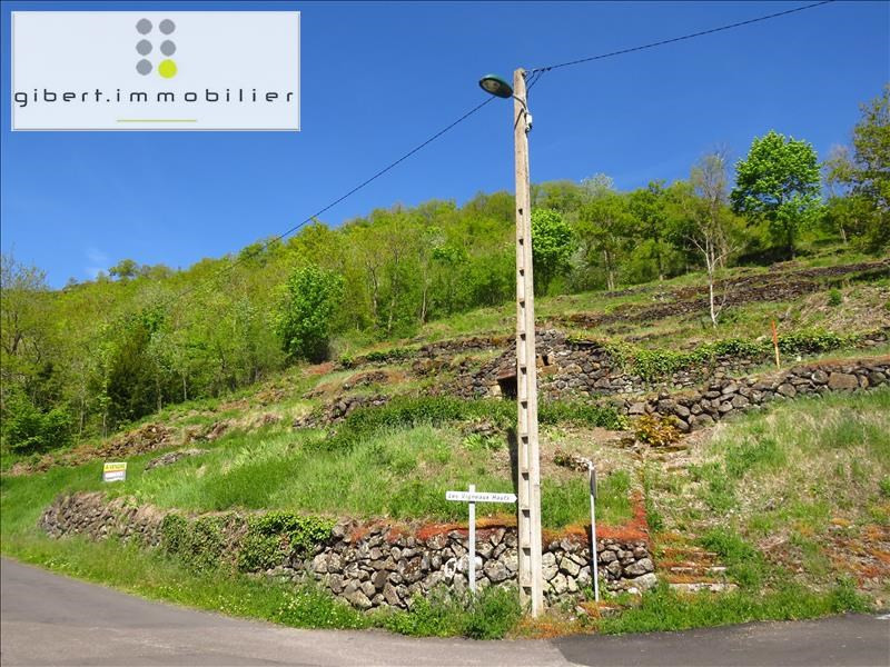 Vente terrain Ceyssac 38600€ - Photo 3
