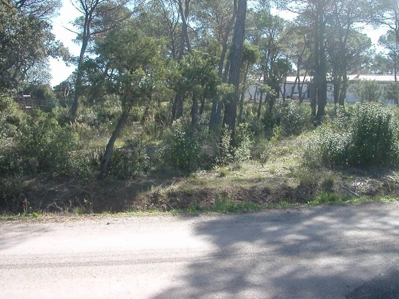 Vente terrain Le cannet des maures 169 000€ - Photo 7