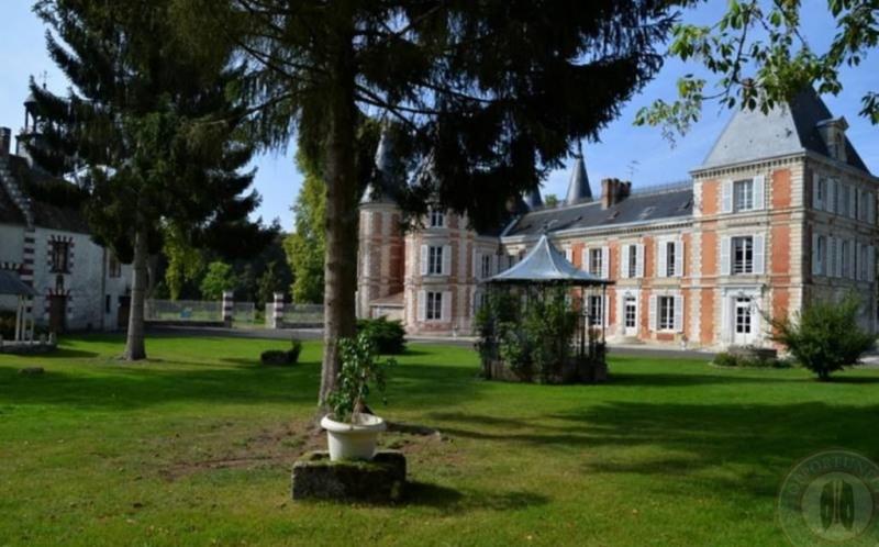 Vente de prestige château Fontenay-trésigny 2950000€ - Photo 8