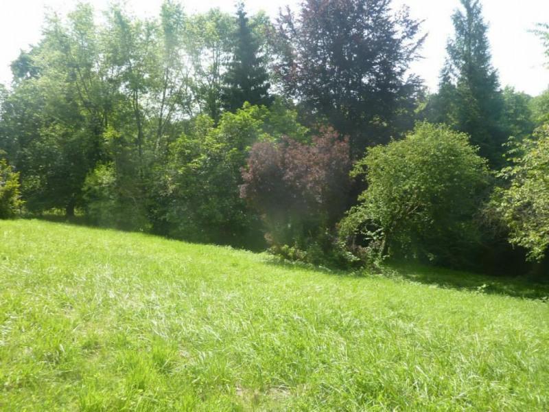 Sale house / villa Lisieux 336000€ - Picture 2