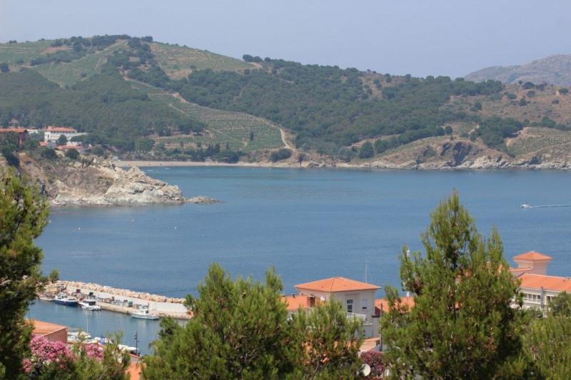 Vente de prestige maison / villa Banyuls sur mer 599000€ - Photo 1