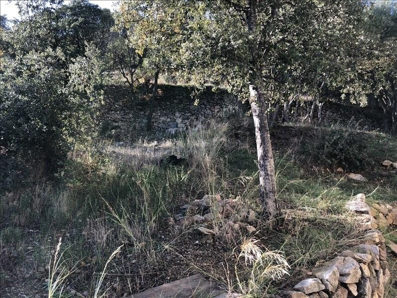 Vente terrain Santa reparata di balagna 150000€ - Photo 4