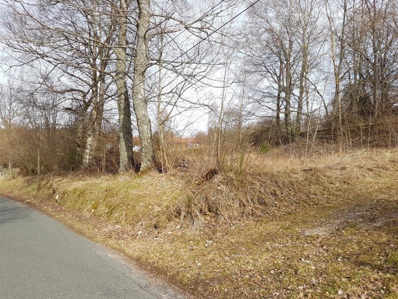 Vente terrain Anould 29700€ - Photo 3