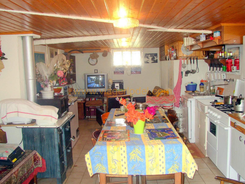 Vitalicio  casa Saint-maurice-en-quercy 28000€ - Fotografía 10