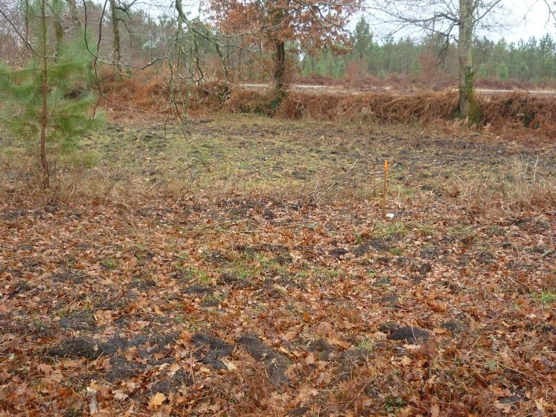 Sale site Rion des landes 50 000€ - Picture 1
