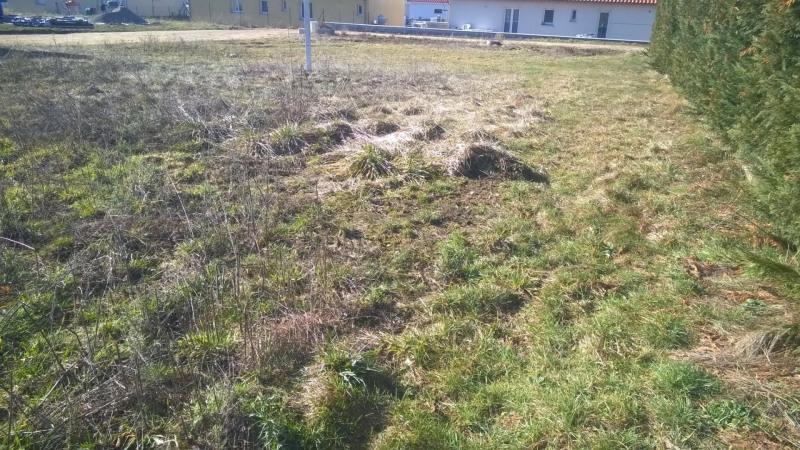 Vente terrain Blavozy 45600€ - Photo 2