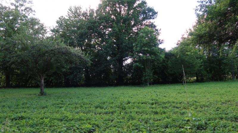 Vente terrain Saint maurice les brousse 32500€ - Photo 5