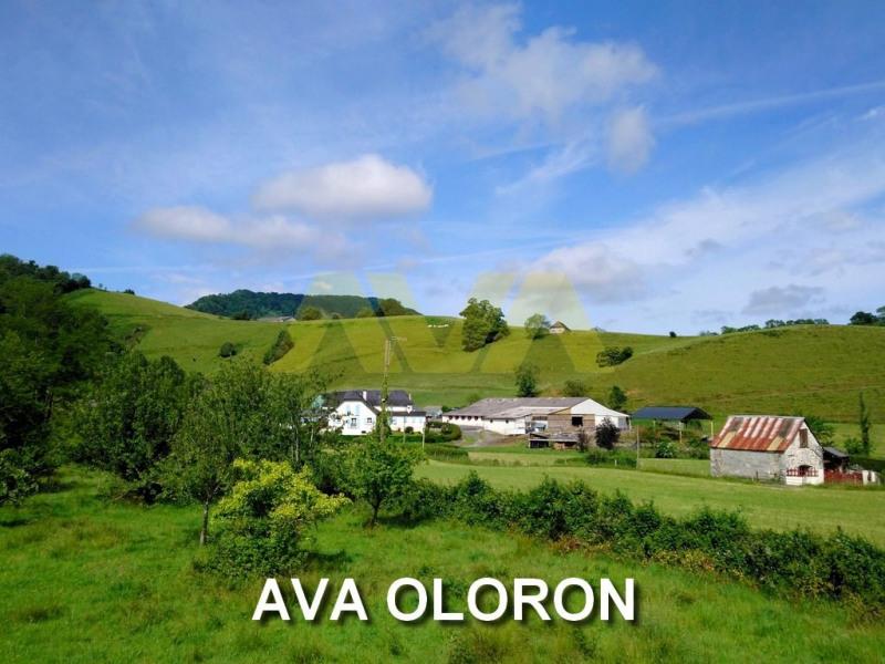 Sale house / villa Oloron-sainte-marie 100000€ - Picture 1