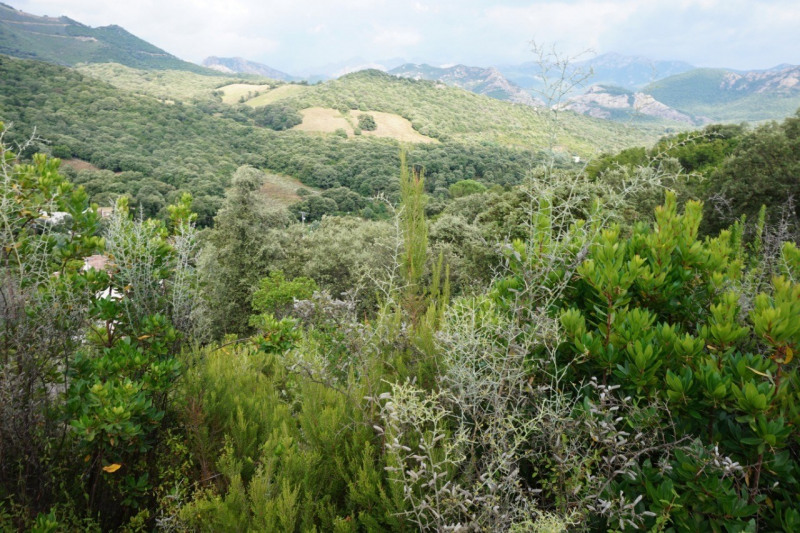 Vente terrain Ocana 199900€ - Photo 1