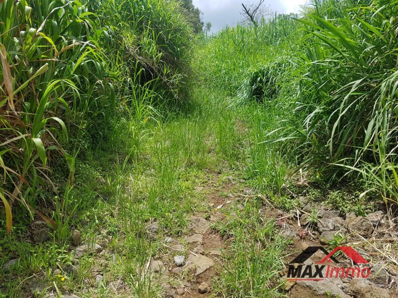 Vente terrain Saint joseph 55000€ - Photo 1