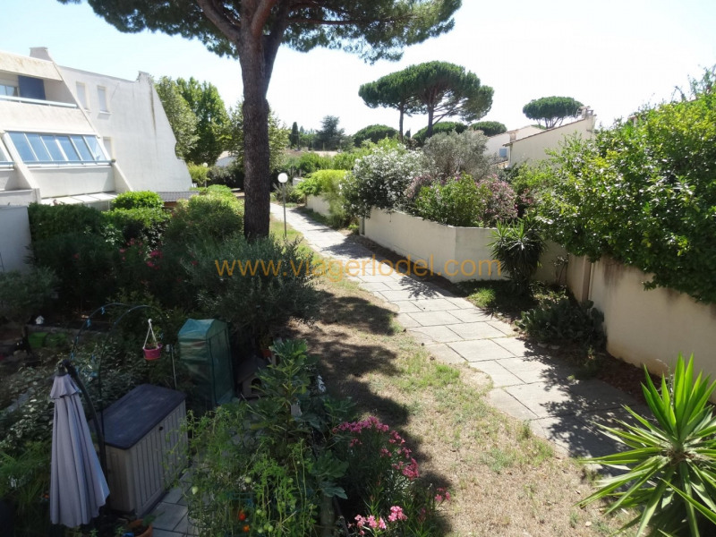 Life annuity apartment La grande-motte 37500€ - Picture 6