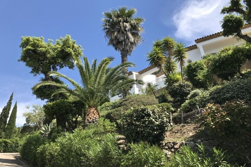 Deluxe sale house / villa Rayol canadel sur mer 1980000€ - Picture 4