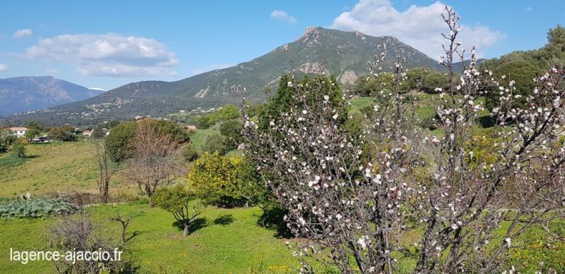 Vente terrain Bastelicaccia 160000€ - Photo 8