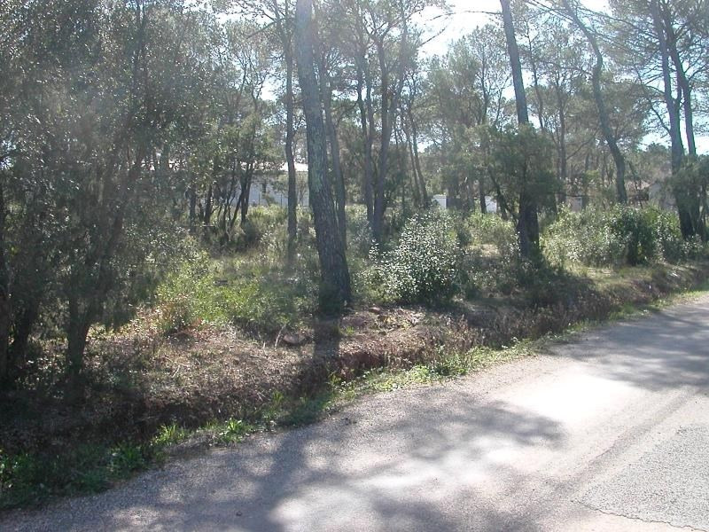 Vente terrain Le cannet des maures 169 000€ - Photo 8