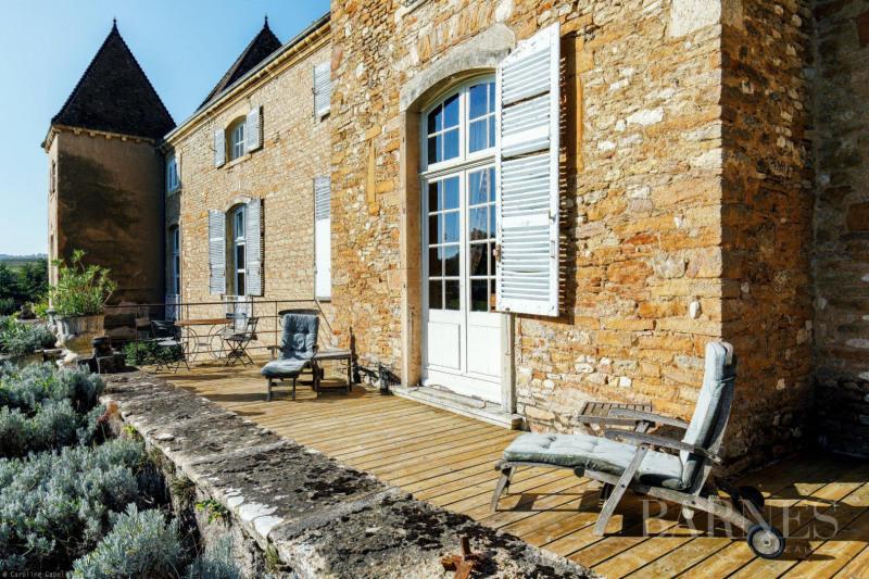 Vente de prestige château Mâcon 1770000€ - Photo 5