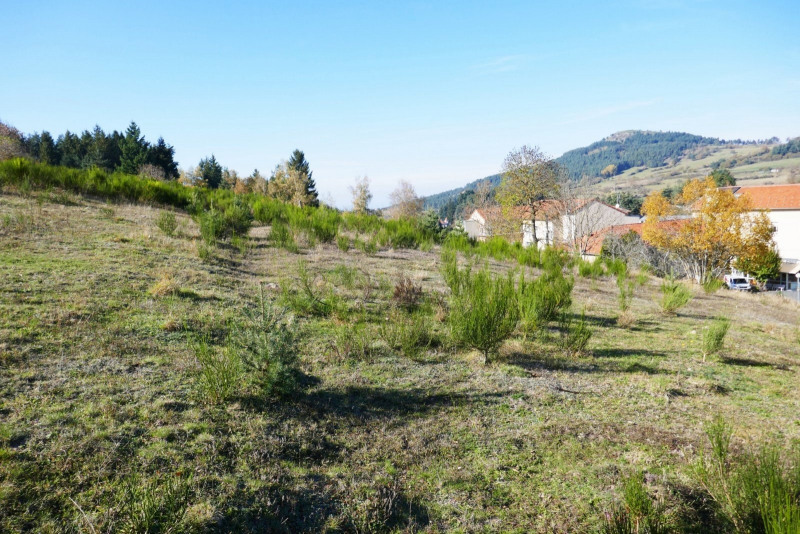 Sale site Laussonne 20 800€ - Picture 2