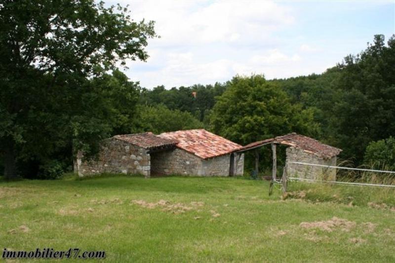 Sale house / villa Prayssas 295000€ - Picture 7