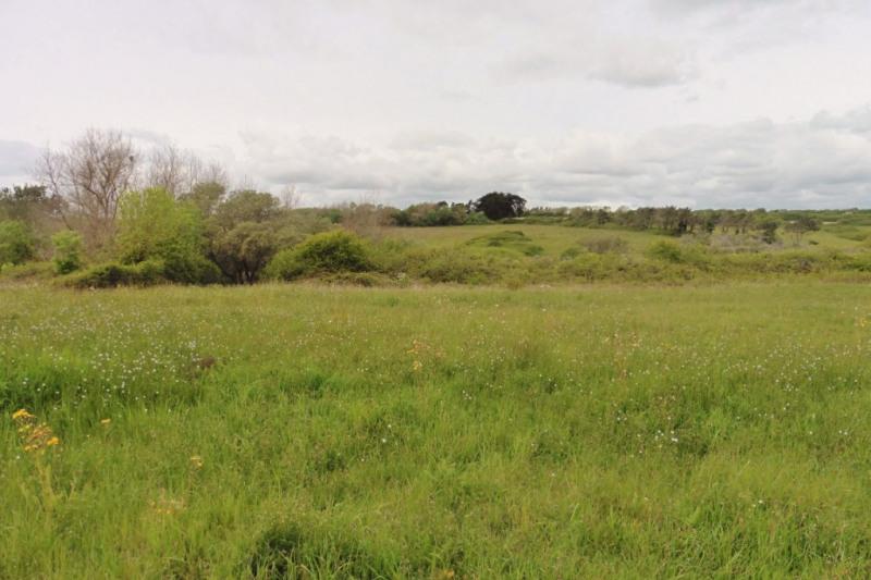 Verkauf grundstück Ploneour lanvern 18150€ - Fotografie 3