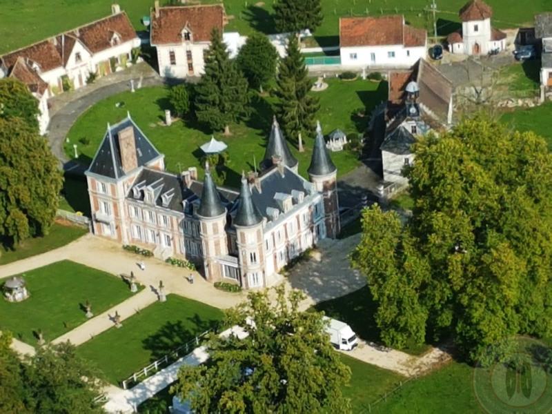 Vente de prestige château Fontenay-trésigny 2950000€ - Photo 4