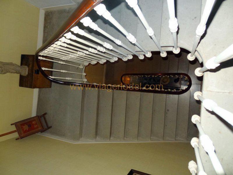 Viager maison / villa Saint-laurent-de-la-cabrerisse 130000€ - Photo 9