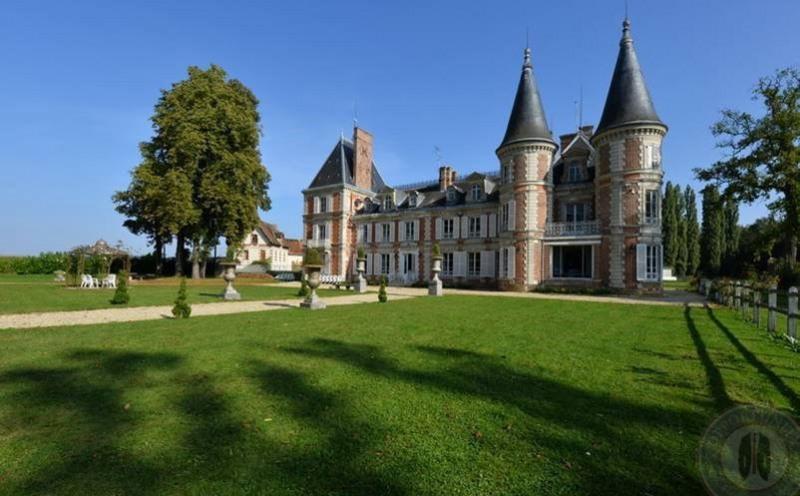 Vente de prestige château Fontenay-trésigny 2950000€ - Photo 5
