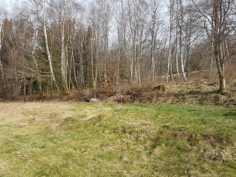 Vente terrain Anould 33000€ - Photo 1