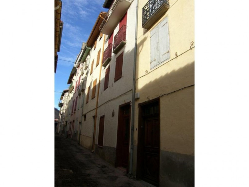 Location vacances maison / villa Prats de mollo la preste 560€ - Photo 11