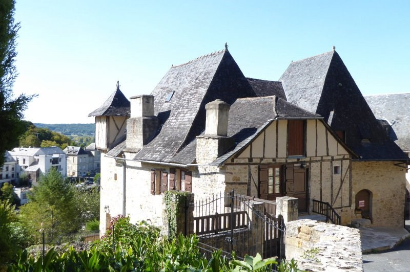 Sale house / villa Terrasson la villedieu 420000€ - Picture 2