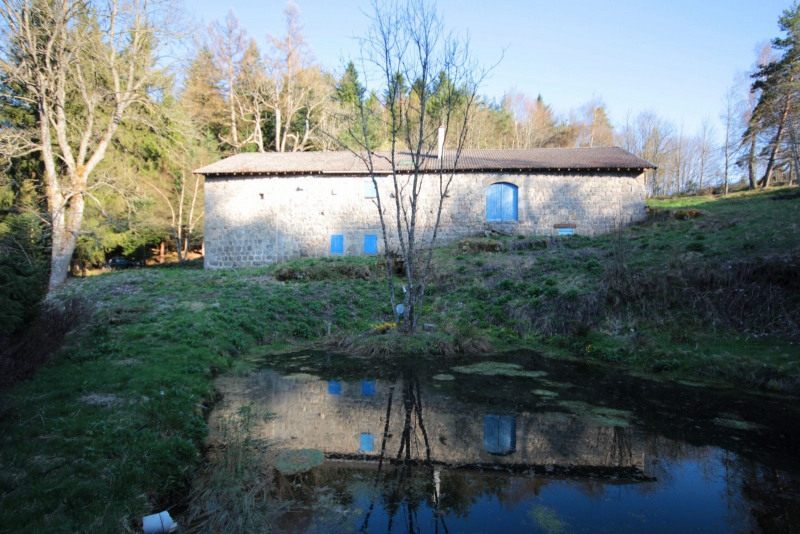 Sale house / villa Mazet st voy 273600€ - Picture 14