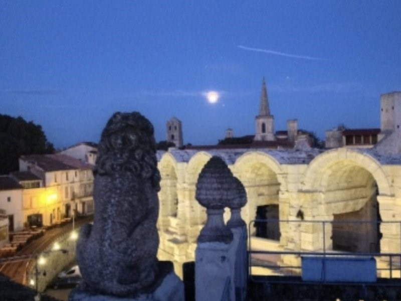 Verkoop  huis Arles 498000€ - Foto 1