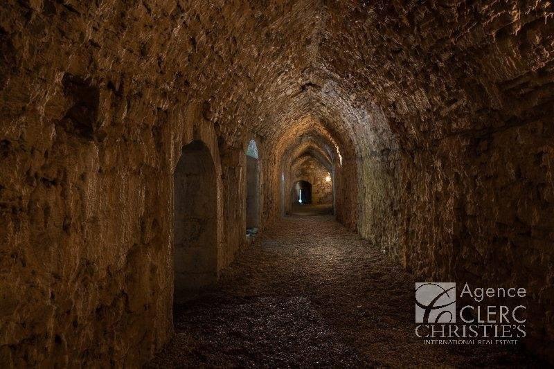 Vente de prestige château Saint-pierre-d'albigny 4250000€ - Photo 11