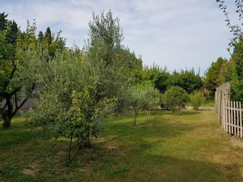Deluxe sale house / villa Saint remy de provence 1050000€ - Picture 5