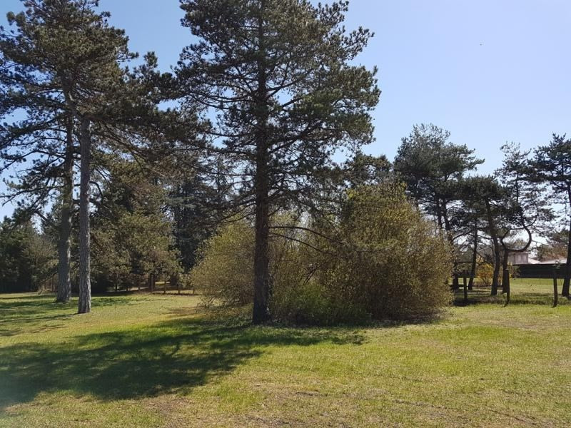 Vente terrain St jean de niost 257500€ - Photo 1