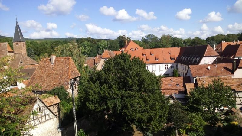 Rental apartment Wissembourg 460€ CC - Picture 7