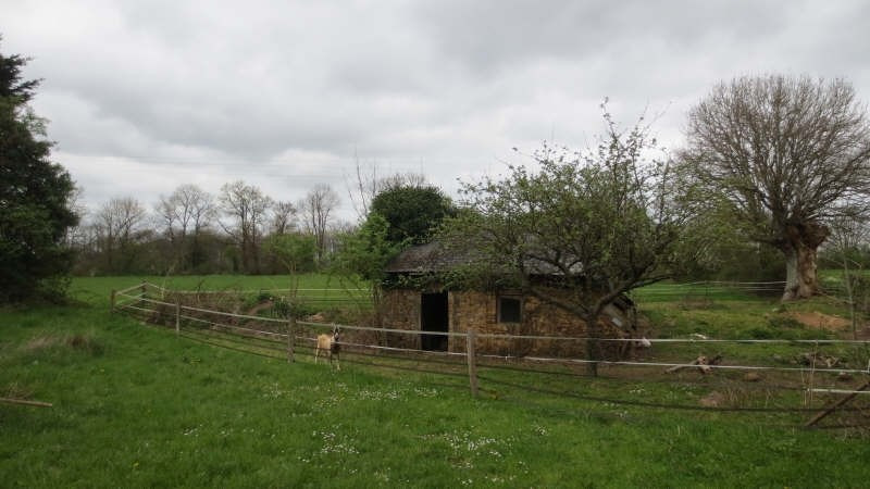 Vente maison / villa Fresnay sur sarthe 174075€ - Photo 5